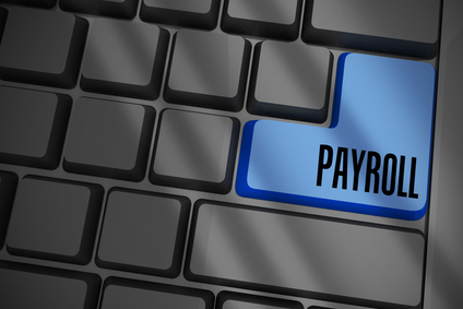easy-payroll-software-novato-ca