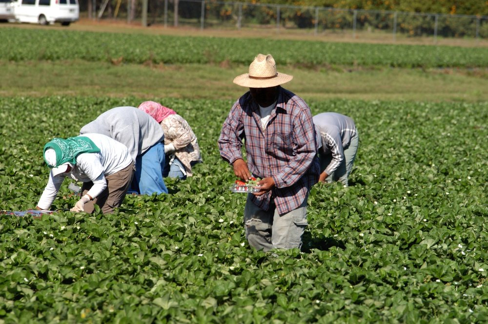 new-immigration-california-labor-law-adds-new-burdens-on-employers