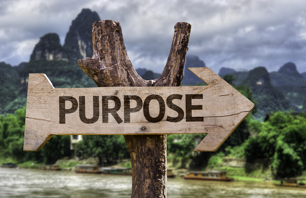 what is your company's purpose